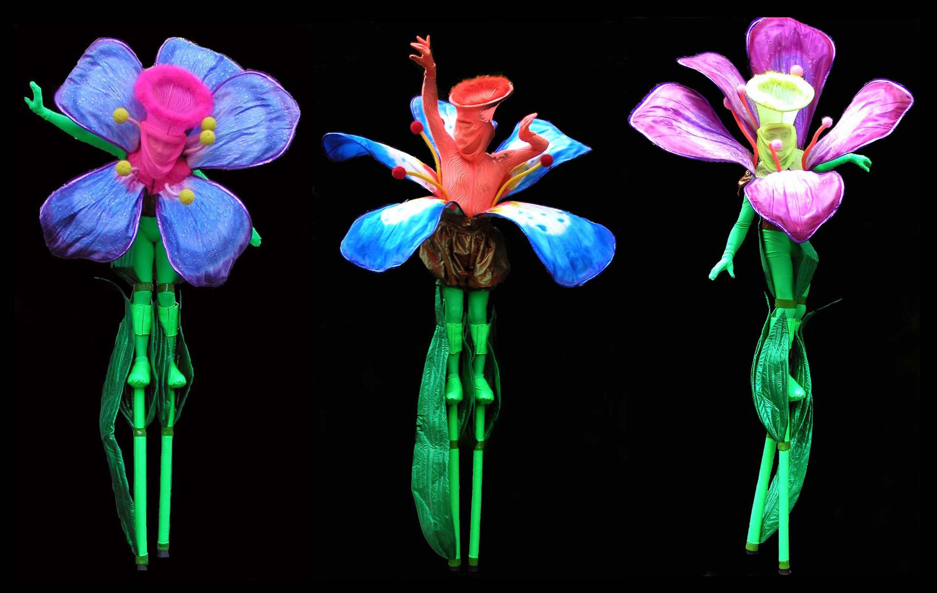 1330934949_chudaki-bouquet